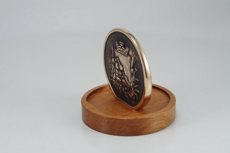 Медальон Котёнок с улицы Лизюкова г.Воронеж Сувенир из Воронежа